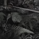 奈良  nara  隠れ家  三五夜  茶道  煎茶道  お茶  玉露  マインドフルネス  呼吸法  瞑想  クリスタルボウル  ヨガ  小満  茶室  古民家  jr奈良  徒歩  2分  三網田