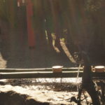 奈良 nara 三五夜 天河大弁財天社 天川村 弁財天 茶道 煎茶道 お茶 煎茶体験 煎茶道体験 JR奈良駅 徒歩 2分 三網田 龍 龍神 奥大和