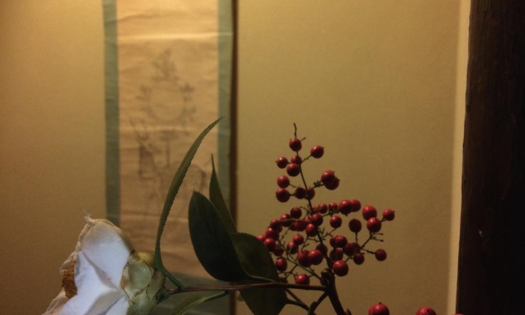 奈良 nara 隠れ家 三五夜 茶道 お茶 煎茶 煎茶道 体験 教室 習い事 お稽古 煎茶教室 煎茶道教室 茶室 茶席 茶会 玉露 宇治茶 丸久小山園 趙州 JR奈良駅 徒歩 2分 三網田 カフェテオリア cafeteoria 聖ヒルデガルドの茶会 今出川 塩五 村雨 亀屋清長 蓮月せんべい 太田垣蓮月 富岡鉄斎 鶴屋徳満 曲水の宴 和菓子 上生菓子 春日曼荼羅 春日若宮おん祭り 春日大社 白玉椿 ツバキ 椿 南天 ナンテン