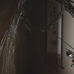 奈良 nara 三五夜 さんごや 三五屋 茶会 茶室 隠れ家 にじり口 炭 炉 新年 お茶 茶道 大福茶  掃結び柳 掛軸 椿 ツバキ 白玉椿 ししがしら年  茶道具 JR奈良駅 駅前 月釜 徒歩圏内 奈良県 奈良市 三網田 濃茶 薄茶 続き薄 茶道具 茶道具販売 上生菓子 和菓子 干菓子 初釜 茶の湯 花びら餅 丸久小山園 雲鶴 紅白椿 小人数 人気茶会 奈良散策 冬の奈良 ほっこり 少人数 ゆったり